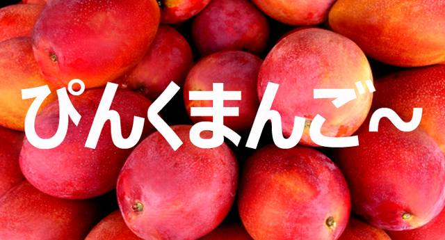 ピンクマンゴー