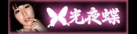 光 夜 蝶