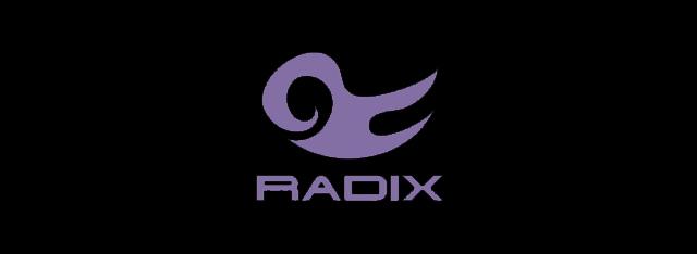 RADIX公式