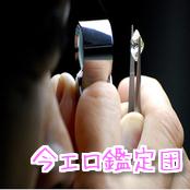 今エロ鑑定団