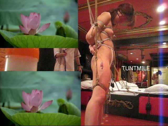 SMルームの天井から吊るされた縄で一本緊縛され鞭でスパンキング責めを味わう素人女!